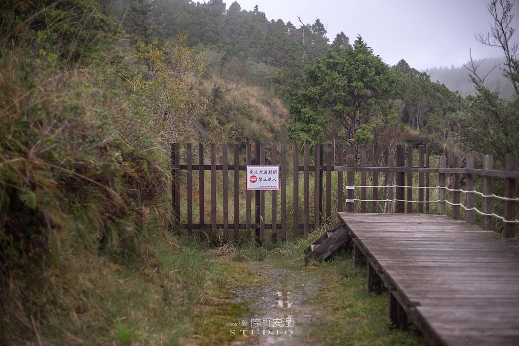 太平山翠峰湖環山步道 |走在泥濘的道路上,只為途中美景 | 宜蘭大同鄉25