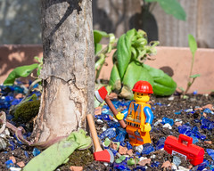 """I'm a lumberjack and I'm ok....."" (Suggsy69) Tags: nikon d7200 fletcher lego legominifigure minifigure axe safetyhelmet overalls toolbox tree lumberjack"