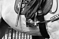 Mounted & Ready (WorcesterBarry) Tags: blackwhite bnw blackandwhite horses places people photographers street streetphotography streetphoto mountedpolice england candid city happiness law demonstrations monochrome ~monochrome~ anger lovebw