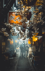 Strolling Down Memory Lane (Mike Kniec) Tags: tokyo memorylane japan streetfoodjapan streetfoodtokyo omoideyokocho pissalley sony sonya7 street food photography streetphotographyjapan