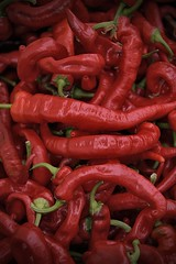 Red Hot Peppers (Scott 97006) Tags: hot capsaicinoid red pepper heat spice spicy chilli