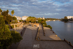 Sunset at my back (Mariano Colombotto) Tags: seville sevilla andalucia españa spain travel river riverside shore city cityscape sunset atardecer nikon water ngc