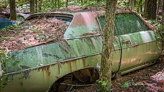 Old Car City 165