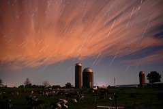 StarStaX_IMGP8925-IMGP8925_lighten-GROUND-maskblend-ppx6-1200 (TheLiarsCircus) Tags: thiseveningssky sky startrails starstax lickskillet alabama silos silo moomoos cows pentax