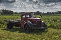 West Haven Farm Truck (scottnj) Tags: scottnj scottodonnellphotography truck antique farm farmstand advertisement westhavenfarm nj 365project 365the2018edition 3652018 day263365 20sep18 antiquetruck vintagetruck flatbed
