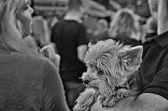 Photo (BadSoull) Tags: streetphoto 2018 nikon dslr d5100 prague europe trip photowalk blackandwhite bnw
