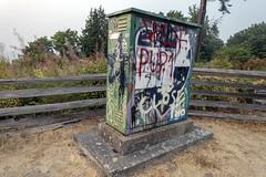 box (steveleenow) Tags: vancouver vancouverbccanada bccanada wreckbeach beach britishcolumbia vancouverbritishcolumbiacanada bc british columbia walk nature naturewalk