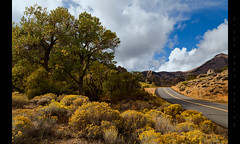 Road to Virginia City (Whitney Lake) Tags: explore 12 blooming sky chamisa virginiacity nevada landscape desert