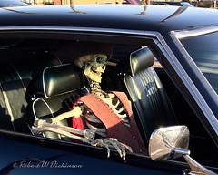 Phoenix in the Summer (eoscatchlight) Tags: scottsdale pavilionscarshow funny skeleton skeletonincar