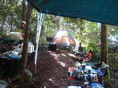 Forest camp - Mount Mecula