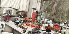 Built-in kitchen (IgorAlmeida BlackBart) Tags: hive kunst {be} ariskea acorn dahlia blueprint shinyshabby fameshed fameshedgo kustom9