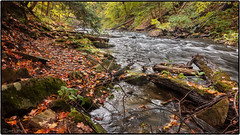 original image (Richard Banner Jr.) Tags: beaverdams creek stcatharines panasonic dmc lx7 water autumn ontario