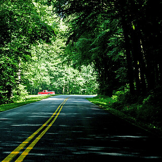 Newfound Gap Road, North Carolina, USA