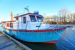5 Ambler-6263 (Christmas Ships Parade) Tags: 2017 christmasshipsparade columbiariver december holiday portlandoregon ships willametteriver boat captain captains lights tradition portland oregon usa