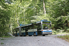 Verkehrsbetriebe Zürich Nr. 120 Witikonerstrasse (Bus und Bahn by SF) Tags: verkehrsbetriebe zürich vbz trolleybus oberleitungsbus obus filobus mercedesbenz o405gtz ausgemustert wald