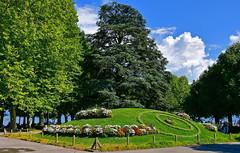 Place du Vieux Port (Diegojack) Tags: vaud suisse lausanne ouchy d500 paysages fleurs jardin public promenade groupenuagesetciel