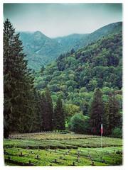 (philippe baumgart) Tags: elsass alsace valléedemunster metzeral worm wormsa cimetière millet french flag graveyard landsca landscape forest