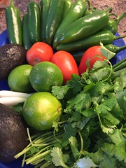 TexMex Vegetables (joncutrer) Tags: food produce vegetables cc0 royaltyfree cooking ingredients lime jalapeno avocado cilantro roma tomato green onions