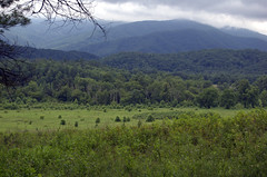 Great Smoky Mountain Nat. Park (swampt01) Tags: mountains smoky mountain cadescove landscape storm clouds trees travel scenic hiking meadow green blue sky