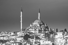 Skyline (Anthony P.26) Tags: architecture category citiestowns external istanbul places travel turkey rooftops skyline cityscape fatihmosque mosque cami buildings city residence cramped streets blackandwhite whiteandblack bw mono monochrome shapes minarets dome domedroof canon70d canon tamron70300 travelphotography sky