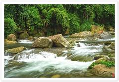油羅溪.新竹 (ccwang12) Tags: sony a7r2 a7rii hsinchu water rock