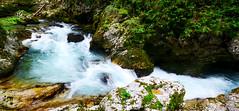 Vintgar (LTigers) Tags: vintgar gorge bled gorje radovna slovenia water rapids d3100
