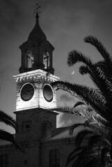 Kings Wharf Clock Tower Bermuda (lawsonpix) Tags: bermuda kings wharf night moon palm bw black white