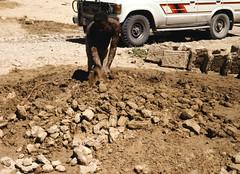Making of mud bricks - you get muddy (motohakone) Tags: jemen yemen arabia arabien dia slide digitalisiert digitized 1992 westasien westernasia ٱلْيَمَن alyaman