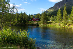 Hemsedal - Norway (Melvin Debono) Tags: flickrtravelaward hemsedal is municipality its own gol become was separated from bergen 1987 buskerud county norway it part traditional region hallingdal lies norwegian national road 52 rv located 220 km 13670 mi northwest oslo 273 16963 melvin debono canon 7d photography travel tree small hemsil river fylke sky wood grass