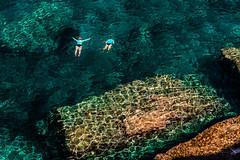 Aigües clares (Ramon InMar) Tags: banyalbufar mallorca mar sea crystal clear water swim