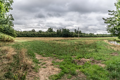 BISHOPSMEADOWS WALK SECTION OF THE NORE LINEAR PARK [LENGTH OF WALK ABOUT SIX FIELDS]-143200 (infomatique) Tags: bishopsmeadows kilkenny naturewalk naturetrail sixfields streetsofkilkenny streetsofireland infomatique fotonique august 2018 holiday sony a7riii