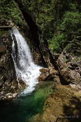 Vintgar Gorge (Sylviane Moss) Tags: vintgargorge slovenia water bled radovnariver waterfall