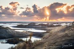 ACROSS THE WETLANDS (Cor Lems) Tags: whatipu landscape winter hour westcoast landscapes auckland sea naturallight naturalworld beach wetlands golden seascape naturallighting ocean nature newzealand