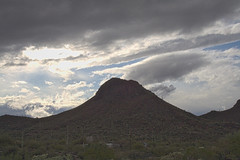 IMG_2567 (wNG555) Tags: 2012 arizona apachetrail superstitionwilderness canoneos400drebelxti phoenix