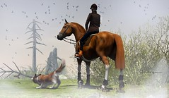 Morning ride (Doctorgramm) Tags: horse holstein virtual morning fog dust sweet birds secondlife water jian dog collie countryside men man old golden age