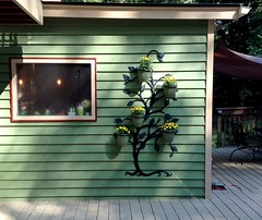 Tree Wall planter from Plow and Hearth. Love it! Just added Mums. (jakyle8701) Tags: planter green mums gardenideas creative backyards gardening creativebackyards plowandhearth