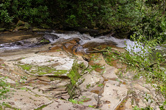 Moss on River Rock (rschnaible (On Holiday)) Tags: saluda north carolina the south blue ridge mountains pacolet river water stream hike hiking outdoor landscape woods forest moss