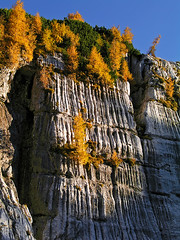 Mountain karst on Kanin (Vid Pogacnik) Tags: italia italy julianalps kanin canin karst limestone geology outdoors landscape hiking mountain autumn