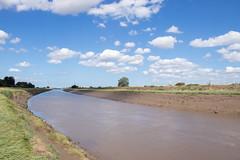 River Nene - Foul Anchor, Cambridgeshire, UK-2 (Nature21290) Tags: cambridgeshire foulanchor july2018 rivernene saltmarsh uk