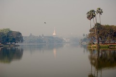 Still A Memory (The Spirit of the World ( On and Off)) Tags: park fog kandawgyipark mood burma myanmar palms trees lake water waterscape reflections pagoda temple gold landscape mysticalatmosphere yangon