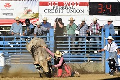 "Baker County Tourism – basecampbaker.com 47182 (Base Camp Baker) Tags: oregon ""easternoregon"" ""bakercountytourism"" basecampbaker ""basecampbaker"" ""bakercounty"" rodeo cowboys ""bakercitybroncandbullriding"" ""bakercity"" ""oregonrodeo"" ""minersjubilee"" oregonrodeo ramrodeo traveloregon travel tourism roughstock rodeolife bulls bullriding"