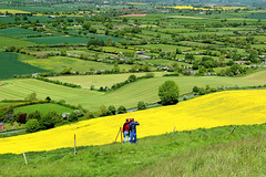 Admiring the view (iwys) Tags: viewpoint landscape green yellow fields rural englsih countryside westbury wiltshire young men hiking hillside