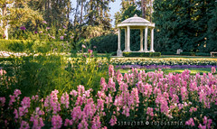 Duncan Gazebo (STRUZYNA PHOTOGRAPHY) Tags: struzyna fotografía kaleidoscopio kαλεîδοσκοπo photography gazebo manito park duncan garden spokane wa washington glorieta jardín flowers flores colores farben colors nature blumen parque walk vacations 2018 usa canon750d canont6i tamron 16400mm lens