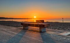 Steamy Solent (nicklucas2) Tags: seascape beach isleofwight solent sea sand seaside seagull lowtide avonbeach mudeford dorset sun sunrise mist