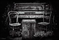 the sound of silence (TheOtherPerspective78) Tags: piano chair thonet decay deserted abandoned lost derelict wood outdoors decoration deco silence thesoundofsilence badgoisern blackandwhite bw schwarzweiss klavier sessel alt holz verlassen verwittert weathered theotherperspective78 canon eosm6
