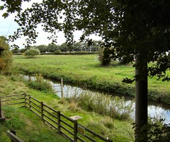 Looking down at the river (Mrs Fogey) Tags: meadows trees water river rivertrent depthgauge greathaywood staffordshire fence