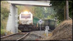 Árbol arriba, árbol abajo. (Álvaro García Moreno) Tags: renfe mercancías 333 3333 ealos galicia tren train trains españa madera