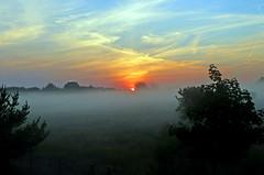 Sonnenaufgang mit Nebel (mr172) Tags: sonnenaufgang sunset deutschland brandenburg oberhavel sonne nebel morgen