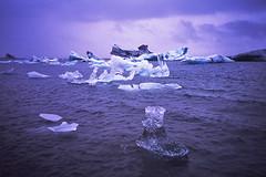 Jokulsarlon Lagoon (azhukau) Tags: iceformation ice jokulsarlonlagoon arctic glacier nature iceland snow jokulsarlon icefloe coldtemperature frozen winter sea polarclimate melting blue water iceberg filmphotography analogphotography olympusxa provia