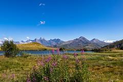 Lac Le Laitelet * Saint Sorlin D'Arves ( Maurienne  - Savoie 08/2018) (gerardcarron) Tags: canon80d laclelaitelet lake landscape maurienne montagne paysage stsorlindarves summer water